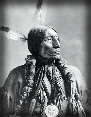 Cheyenne Headdress Photograph - Chief Wolf Robe 1904 by Daniel Hagerman