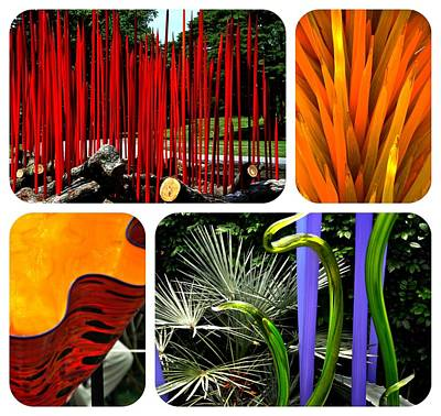 Photograph - Chihuly One New York Botanical Gardens by Jacqueline M Lewis