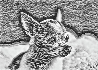 Digital Art - Chihuahua Black And White Pica by Mary Raderstorf
