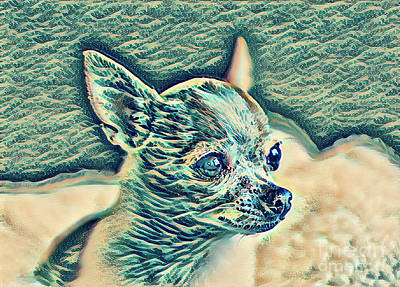 Digital Art - Chihuahua Blue Pica by Mary Raderstorf