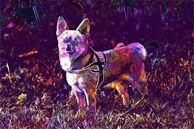 Chihuahua Digital Art - Chihuahua Dog Animal Pet Grass  by PixBreak Art