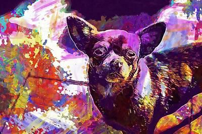 Chihuahua Digital Art - Chihuahua Dog Chiwawa View Look  by PixBreak Art