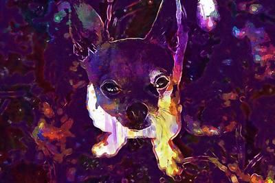 Chihuahua Digital Art - Chihuahua Dog Little Dog Cute  by PixBreak Art
