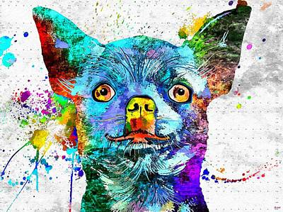 Abstract Of Dogs Mixed Media - Chihuahua Grunge by Daniel Janda