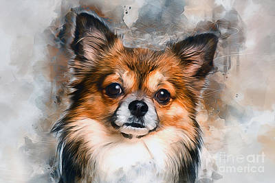 Mixed Media - Chihuahua by Ian Mitchell