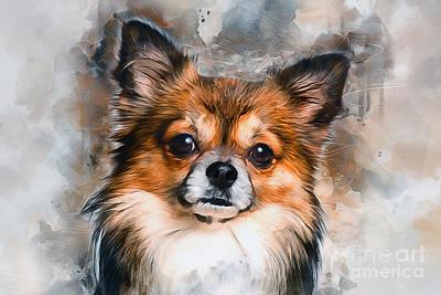Mixed Media - Chihuahua by Ian Mitchell