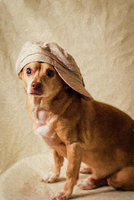 Chihuahua In A Newsboy Hat Art Print