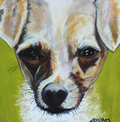 Painting - Chihuahua Mix- Roxie by Laura  Grisham