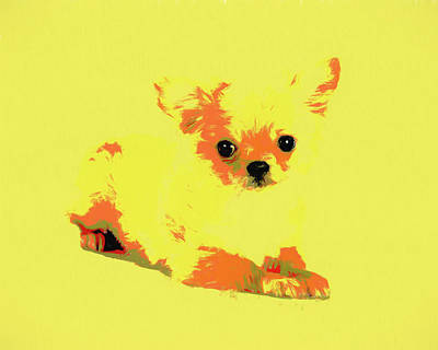 Puppies Mixed Media - Chihuahua Pop Art by Dan Sproul