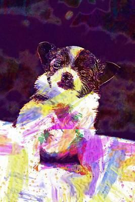 Chihuahua Digital Art - Chihuahua Puppy Animals Dogs Pet  by PixBreak Art