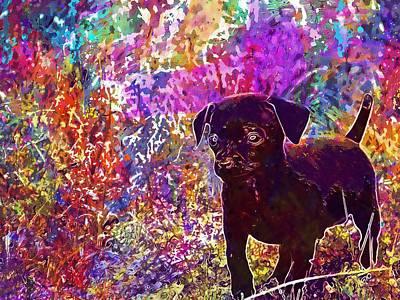 Chihuahua Digital Art - Chihuahua Puppy Canine Cute Grass  by PixBreak Art