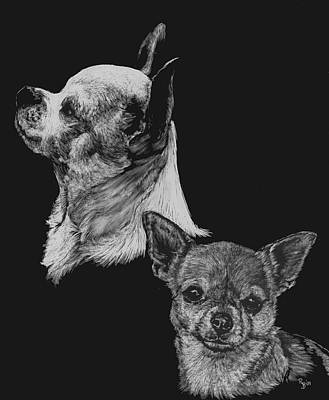 Drawing - Chihuahua by Rachel Hames