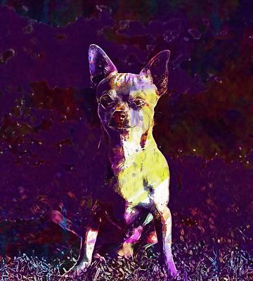 Chihuahua Digital Art - Chihuahua Sobel Dog  by PixBreak Art