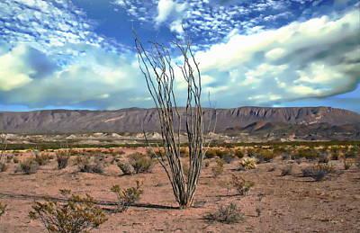 Photograph - Chihuahuan Desert Landscape by Anthony Dezenzio