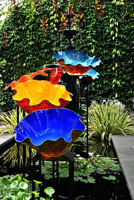 Photograph -  Chihuly 6 by Jacqueline M Lewis