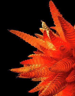 Photograph - Chihuly Sunburst by Teresa Wilson