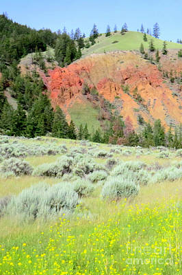 Photograph - Chilcotin Rainbow by Frank Townsley
