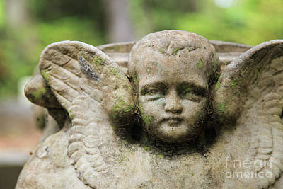 Photograph - Child Angel by Heather Green