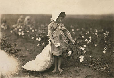 Bare Feet Photograph - Child Labor, A Young Girl Picking by Everett