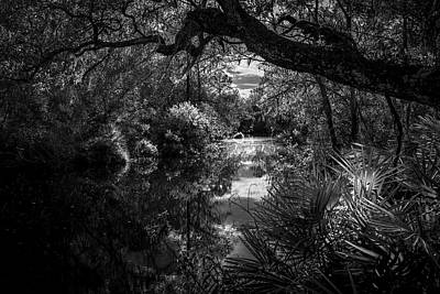 Overhang Photograph - Childhood Creek by Marvin Spates