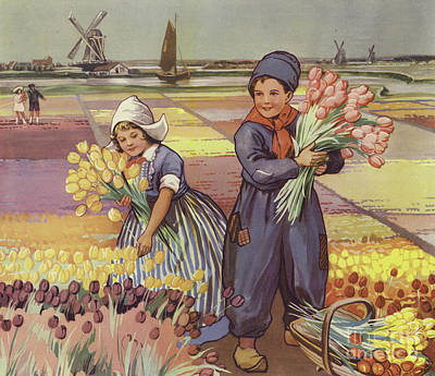 Children Picking Tulips In Holland Art Print by English School