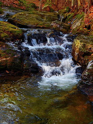 Photograph - Childs Brook 2017 69 by George Ramos