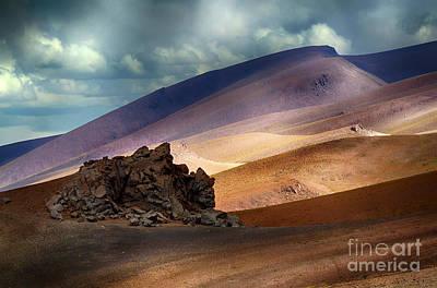 Photograph - Chile Alto Plano  by Bob Christopher