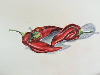 Drawing - Chile Peppers by Lisa DuBois