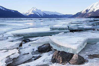 Photograph - Chilkat River Ice Chunks by Michele Cornelius