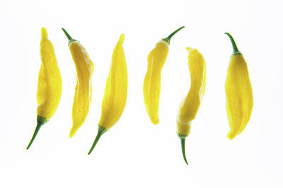 Chillie Photograph - Chillies Lined Up II by Helen Northcott