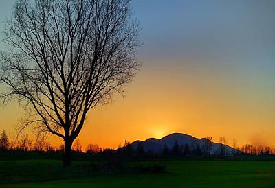 Photograph - Chilliwack, British Columbia by Heather Vopni