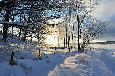 Photograph - Chilly Beautiful Day by Randi Grace Nilsberg