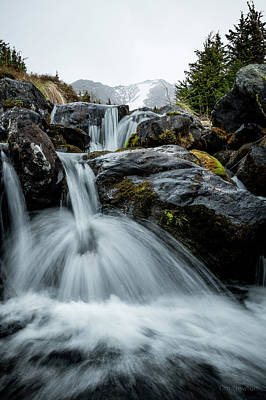Photograph - Chilly Spring Shower by Tim Newton