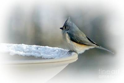 Photograph - Chilly Start by Barbara S Nickerson