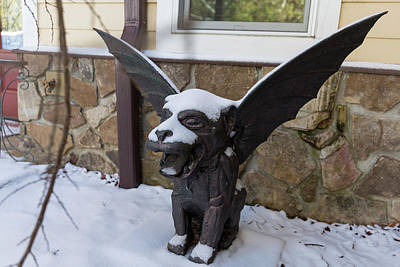 Photograph - Chimera In The Snow by D K Wall