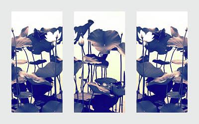 Photograph - Chimera Triptych by Jessica Jenney