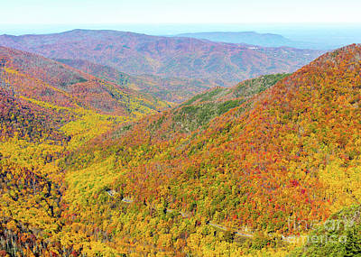 Photograph - Chimney Tops Summit I by Gene Berkenbile