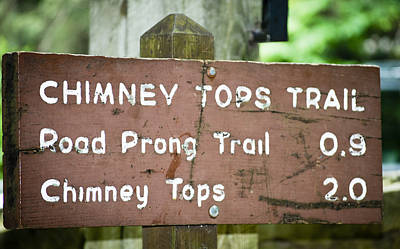 Photograph - Chimney Tops Trail by Christi Kraft