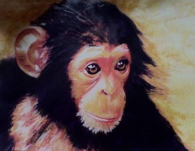 Pastel - Chimp by Mandy Thomas
