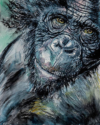Chimpanzee Painting - Chimpanzee by Kovacs Anna Brigitta
