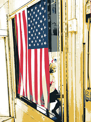 Stars And Stripes Mixed Media - Chinatown  by Shay Culligan