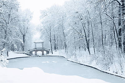 Chinese Bridge In Park Alexandria By Iuliia Malivanchuk Art Print
