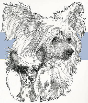Mixed Media - Chinese Crested And Pup by Barbara Keith