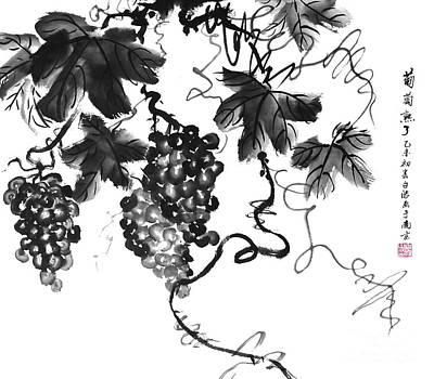 Chinese Grapes Print by Birgit Moldenhauer