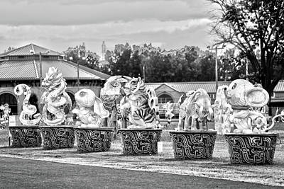 Photograph - Chinese Lantern Animals Monochrome by David Stasiak