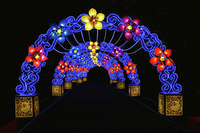 Photograph - Chinese Lantern Festival by Vic Harris