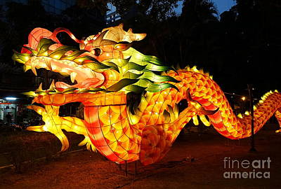 Print featuring the photograph Chinese Lantern In The Shape Of A Dragon by Yali Shi