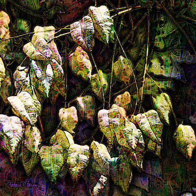 Digital Art - Chinese Lanterns by Barbara Berney