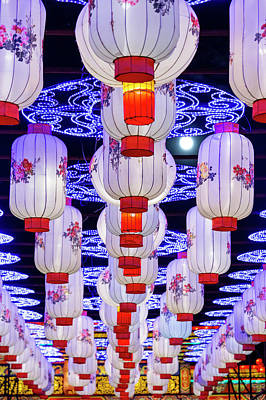 Photograph - Chinese Lanterns by David Stasiak