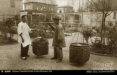 Photograph - Chinese Vegtable Pedler In San Francisco Circa 1880 by California Views Mr Pat Hathaway Archives
